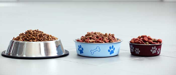 Dry Dog Food Suppliers Uk