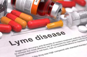 Lyme disease over-vaccination in dogs