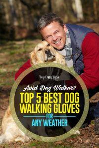 Top Best Dog Walking Gloves
