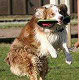 best dog frisbee