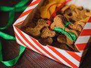 Best Christmas Dinner Recipes for Dogs