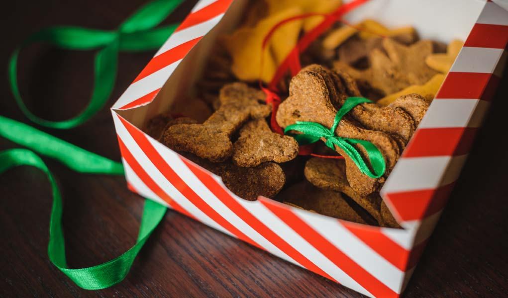 best christmas dinner recipes for dogs - Best Christmas Dinner