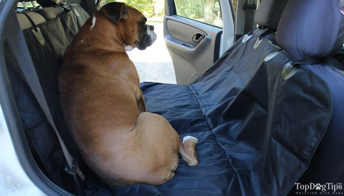 Best Dog Seat Cover >> Best Car Seat Cover for Dogs Comparison: MIU PET vs. Epica