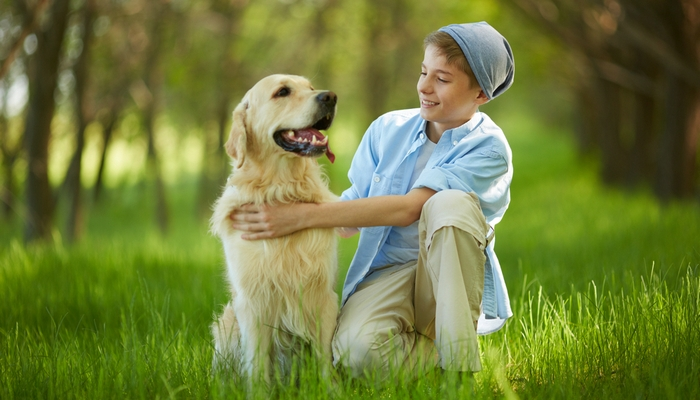 Essential Resources for Dog Owners with Kids