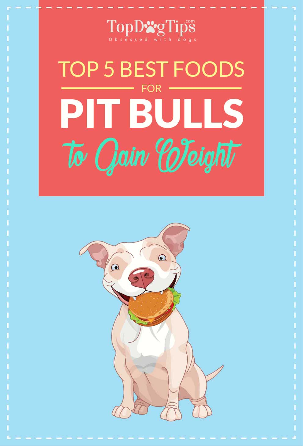 Top 5 best dog food for pitbulls to gain weight and lean muscle 2018 top best dog foods for pitbulls to gain weight nvjuhfo Gallery