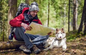 Dog Hiking Gear Guide