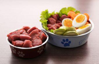 Raw Dog Food Diet Lists
