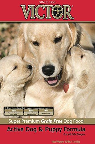Victor Active Dog & Puppy
