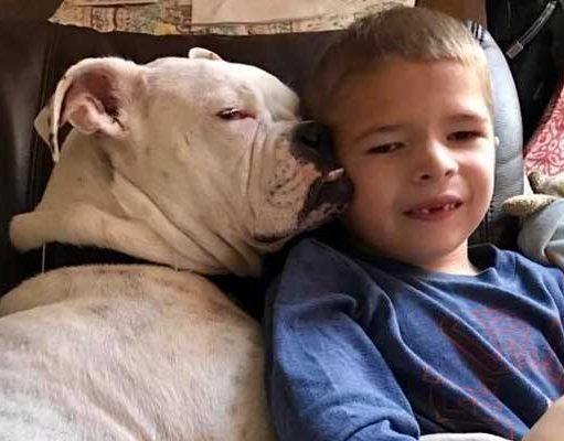 Deaf Dog and Boy
