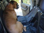 Pettom Dog Car Seat Cover