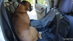 Pettom Dog Car Seat Cover