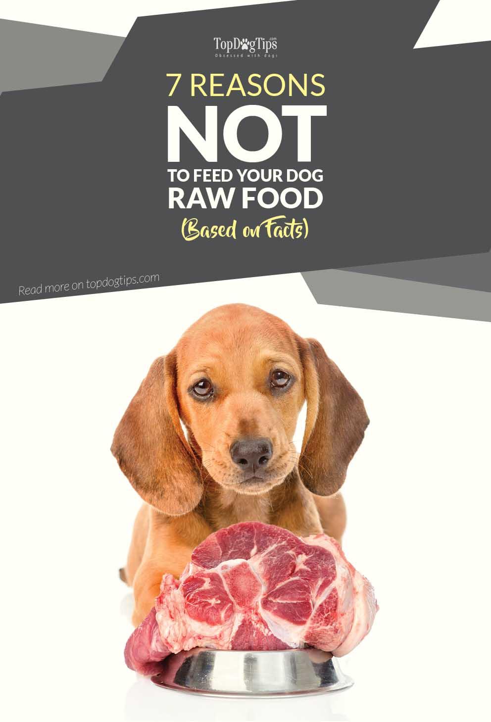 Raw Dog Food Facts