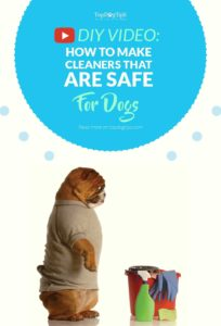 Video on How to Make Homemade Cleaners That Are Safe for Dogs