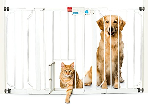 Carlson Pet Products Dog Gate Review