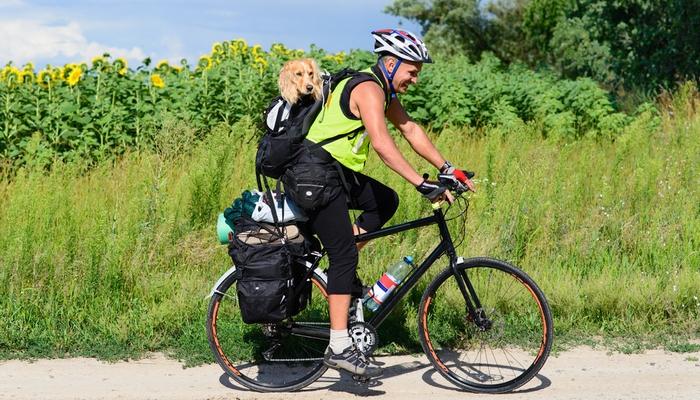 Best Dog Carrier Backpacks