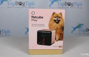 Petcube Play Dog Camera Giveaway