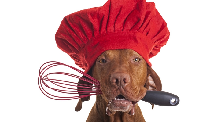 Essential Tips for Making Homemade Dog Food