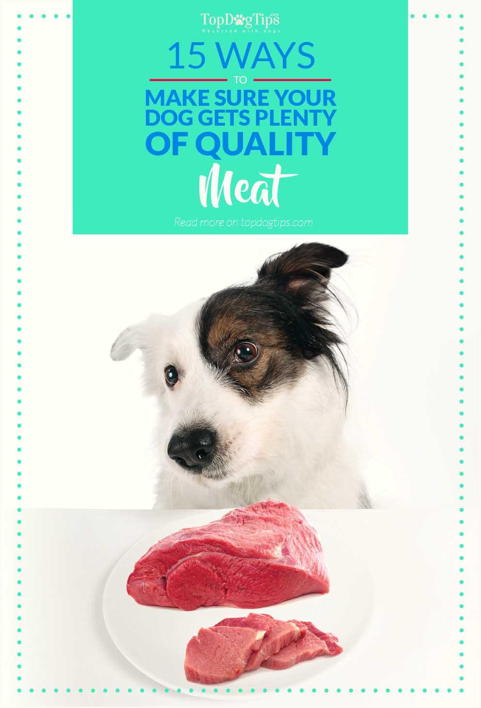 Best Cheap Good Quality Dog Food