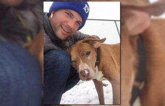 Hot Guy Adopts Sick Senior Dog, Breaks Internet