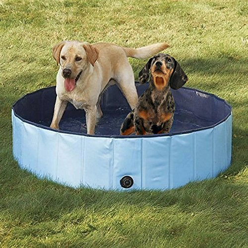 Dog Bathtub Collapsible Pet Bath Pool By PYRUS A Decent And Affordable Swimming
