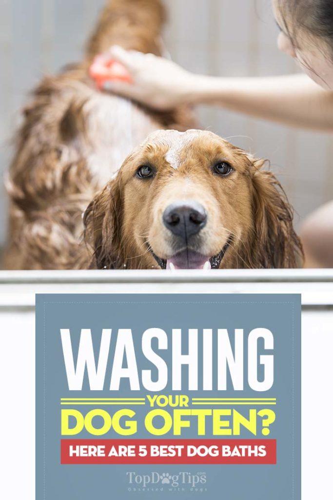 Best Dog Baths for Easier Grooming