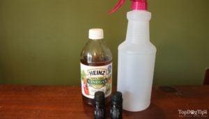 How To Make Homemade Flea Spray for Dogs
