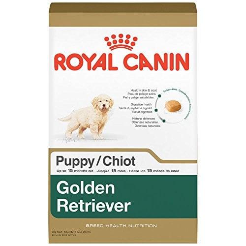 best dog food for golden retrievers 5 vet recommended brands top dog tips. Black Bedroom Furniture Sets. Home Design Ideas