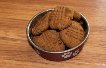 Healthy Pumpkin Cookie Dog Treat Recipe