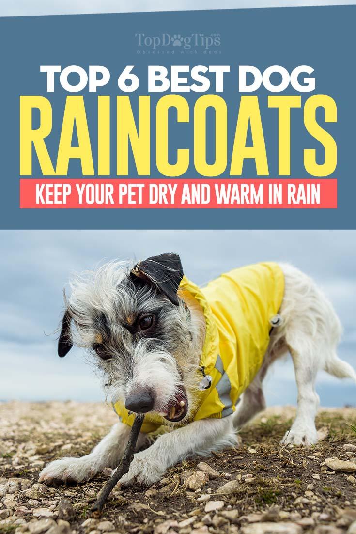 The Best Dog Raincoats