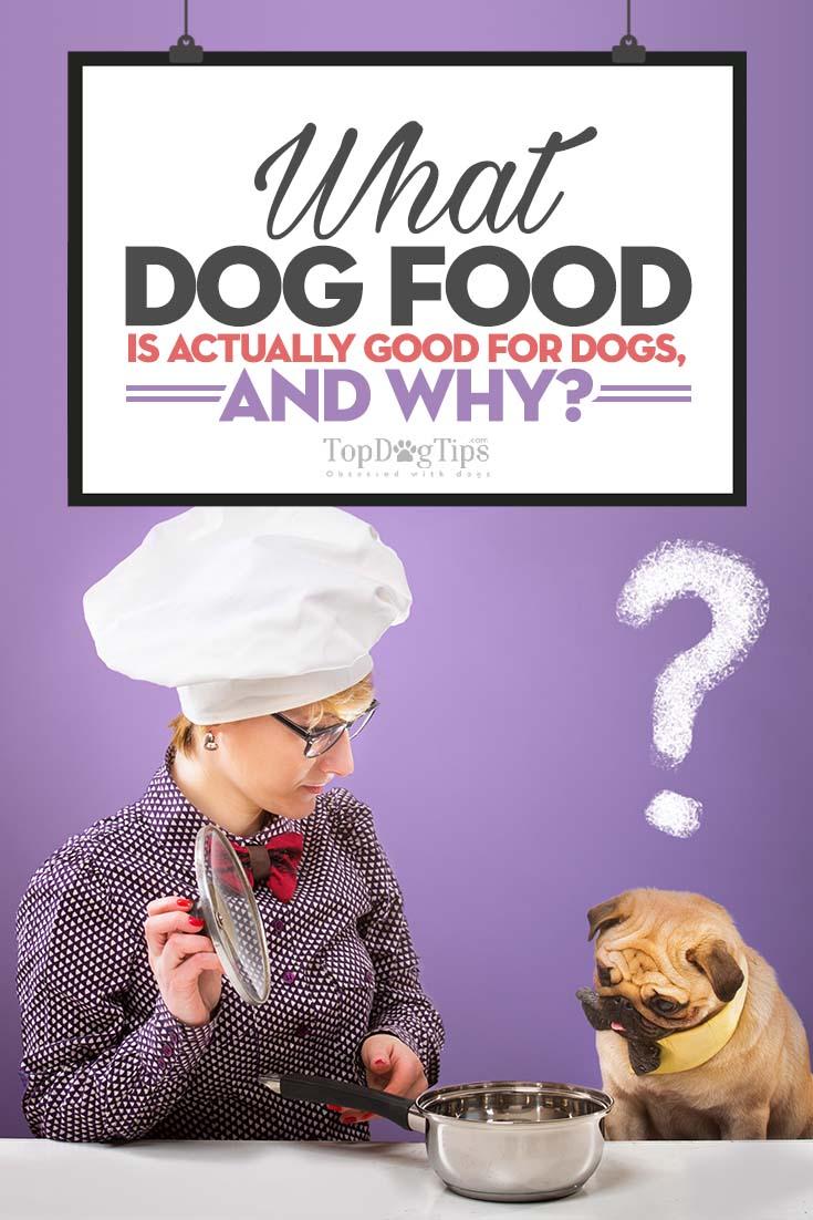 Chinese Dog Food Recall