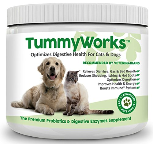 TummyWorks Probiotic for Dogs & Cats