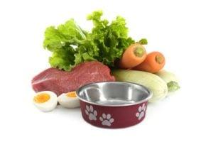 Homemade Dog Food for Cushings Disease