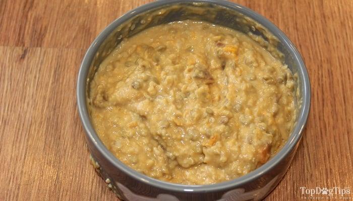 homemade vegan dog food recipe top dog tips