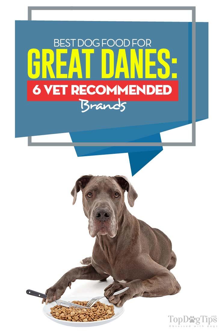 Gentle Dog Food Reviews