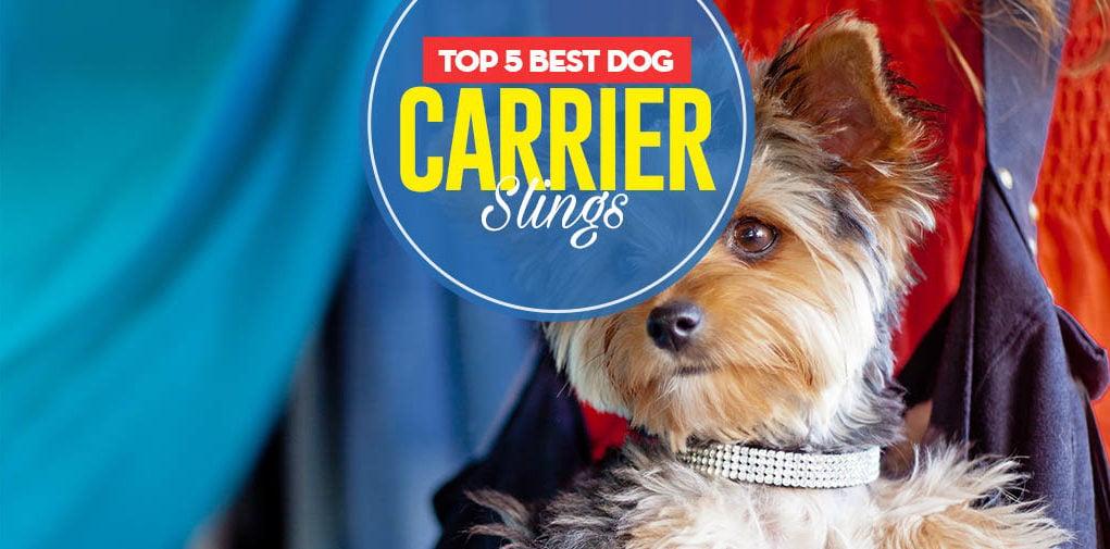 Top 5 Best Dog Carrier Slings In 2017