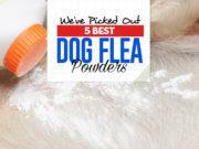 Top 5 Best Dog Flea Powders