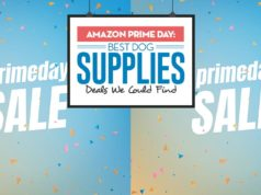 Amazon Prime Day - Top Best Dog Supplies Deals