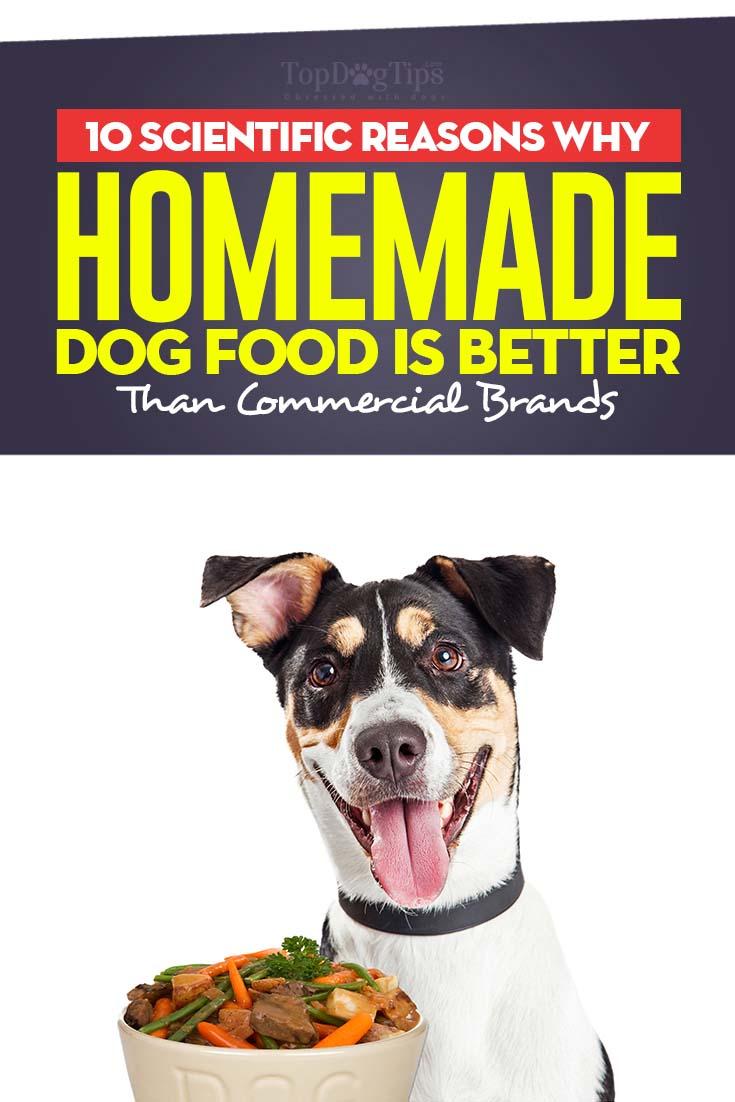 Effects Feeding Your Dog Human Food