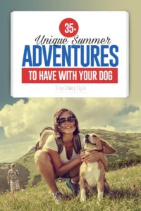 The 35 Unique Summer Adventures to Have with Your Dog