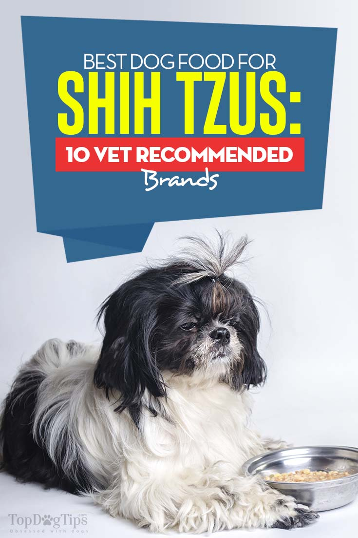 The Best Dog Food for Shih Tzus
