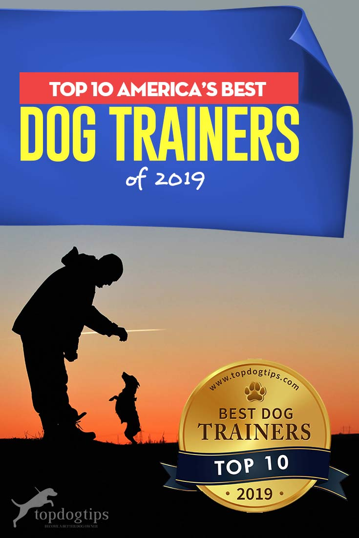 Top 10 America's Best Dog Trainers of 2019