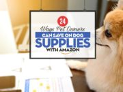 Top 24 Ways Pet Owners Can Save on Dog Supplies with Amazon