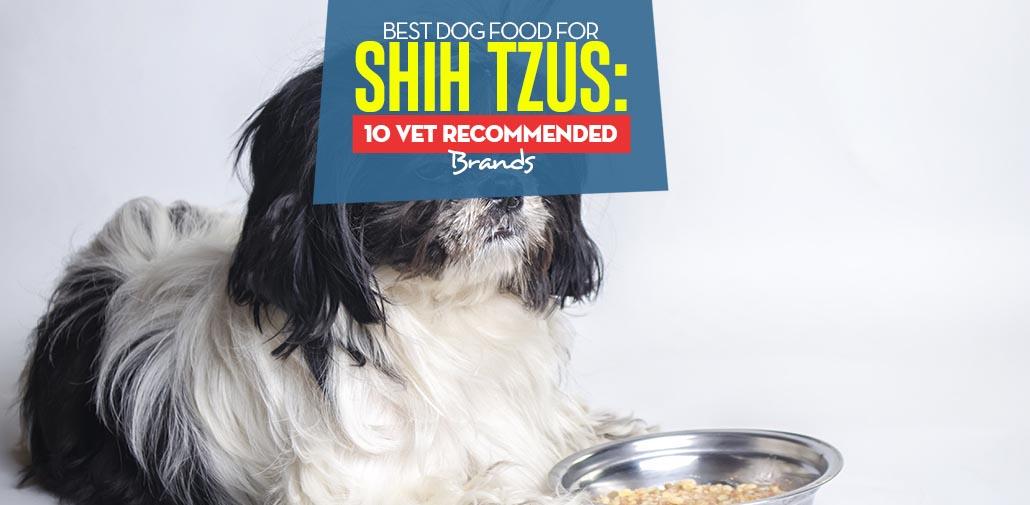 Best Dog Food For Shih Tzus 10 Vet Recommended Brands