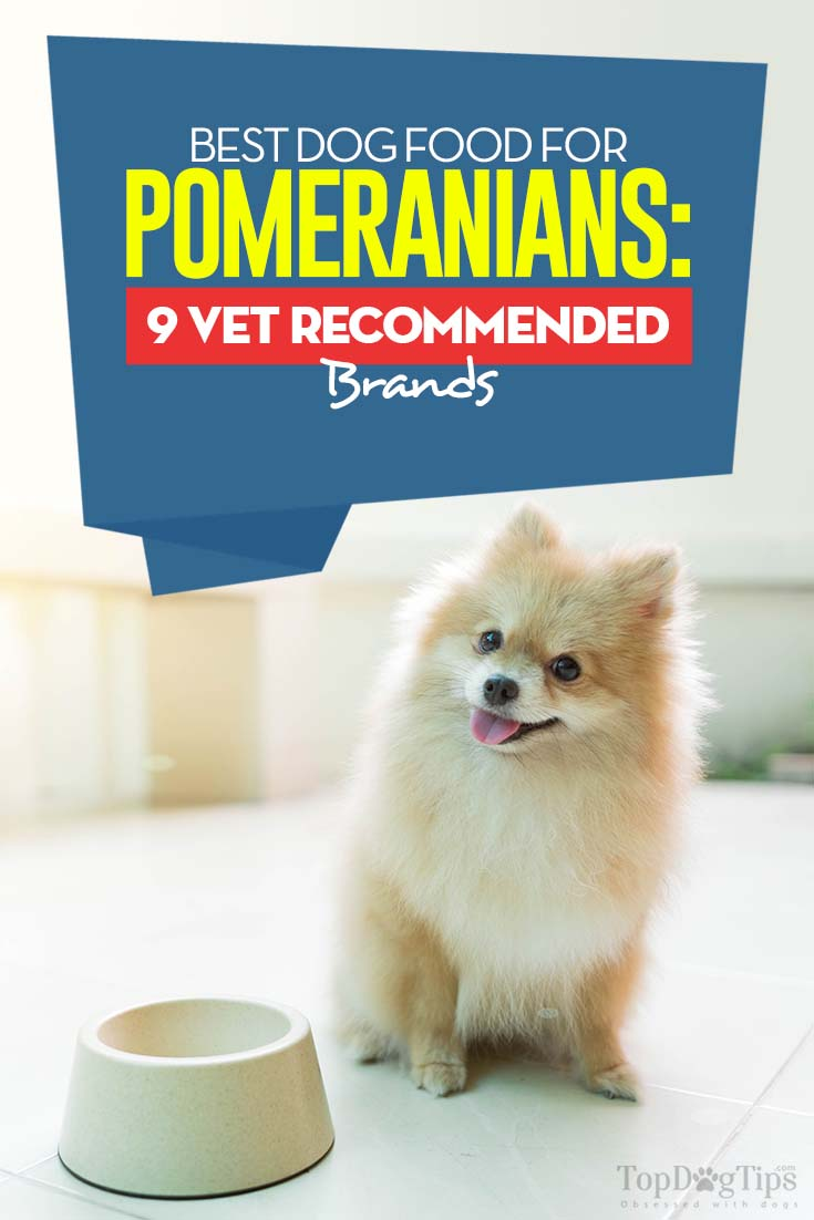 Best Dog Food For Pomeranians In 2020 Top 9 Vet Recommended Brands