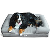 PetFusion Ultimate Bed & Lounge