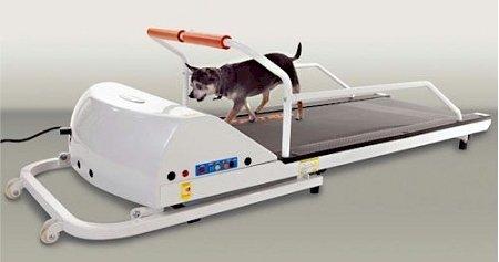 GoPet Petrun PR710 Treadmill