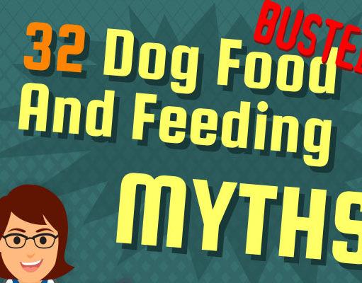 Dog Food Myths Debunked