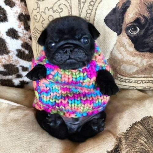Yeah, my mom loves crochet...