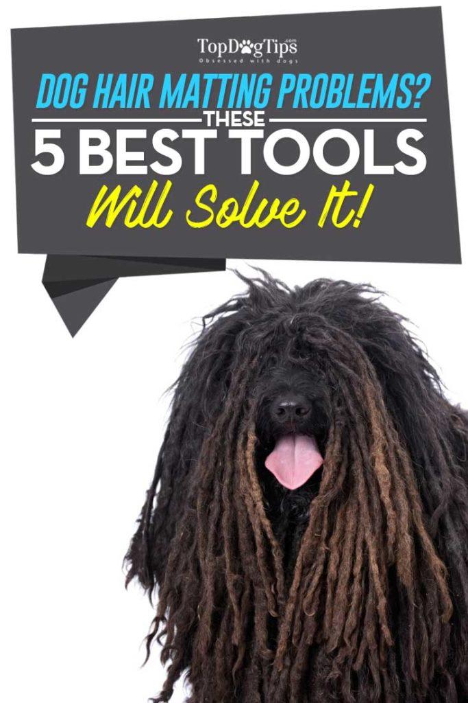 My 5 Favorite Dog Dematting Tools