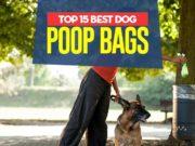 Top Best Dog Poop Bags